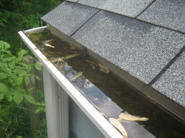 Signs Your Eavestrough Has Issues