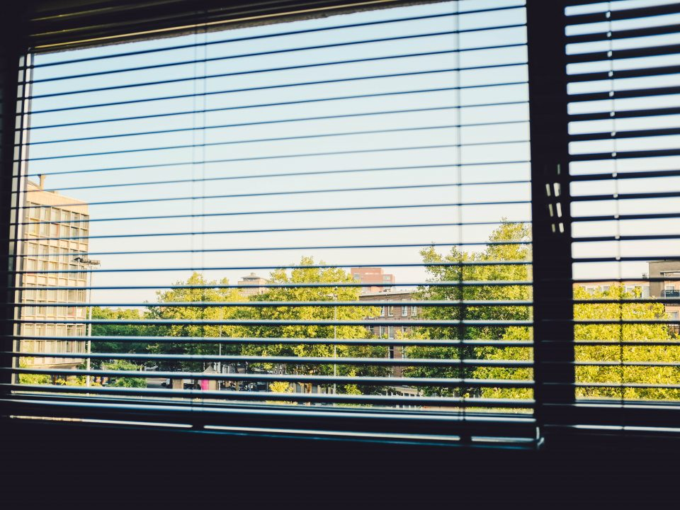 home window with blinds